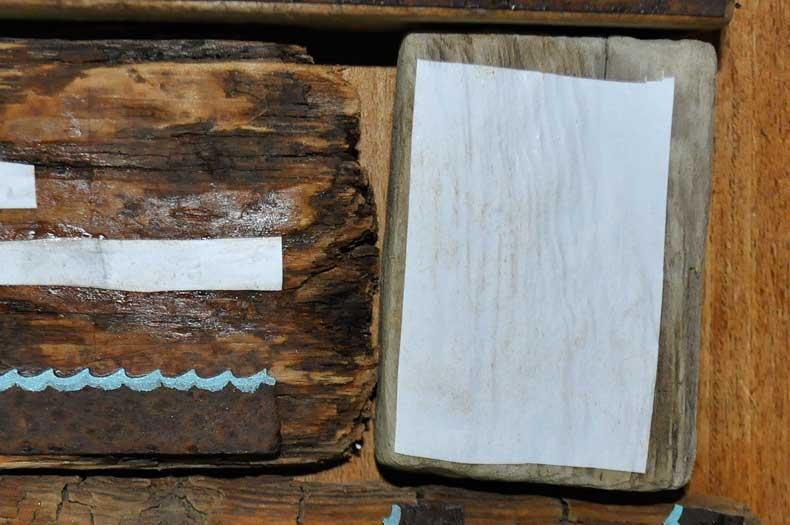 Treibholzeffekt Wie Du Fotos Auf Holz Drucken Kannst