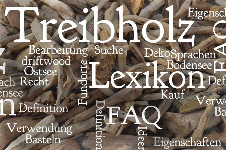 Treibholz-Lexikon für viele Fragen rund um das Thema Treibholz