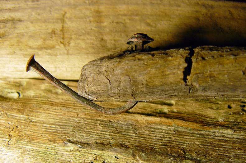 Jahrhunderte alte Treibholz mit Kupfernagel enthalten