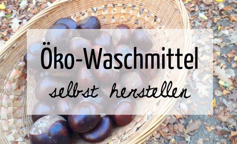 Öko-Waschmittel aus Kastanien selbst herstellen nach Anleitung